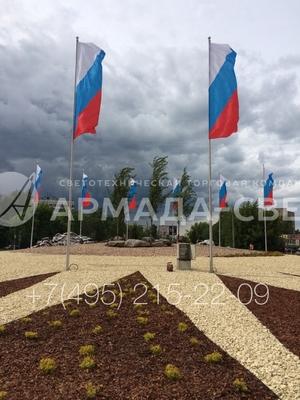 armadasvet_image-10-06-15-09-04