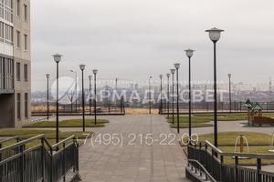 img_ARMADASVET-5151