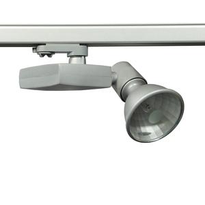 Procyon 2 Серый Трековый светильник