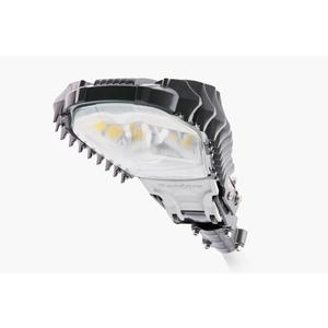 Pandora LED 245E-160 Уличный светодиодный светильник